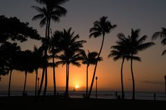solnedgångwaikiki Royaltyfri Foto