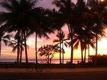 solnedgångwaikiki Arkivfoto