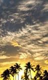 SolnedgångWaimea fjärd royaltyfria foton