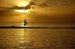 solnedgångwakeboard Arkivbild