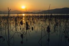 Solnedgångwaterscape av wessjön i hangzhou, porslin Arkivbild