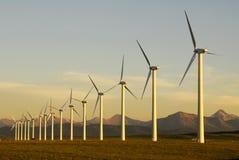 solnedgångwindmills royaltyfri foto