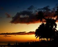 solnedgångwaikiki Arkivbilder