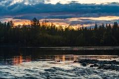 Solnedg?ng i skogskogen vid floden Ryssland arkivfoto