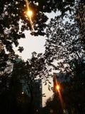 Solnedg?ng fotografering för bildbyråer