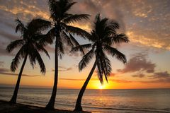 Solnedg?ng ?ver den Ouvea lagun p? den Ouvea ?n, lojalitet?ar, Nya Kaledonien royaltyfria bilder
