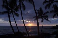 Solnedgång av den stora ön av Hawaii Arkivbilder