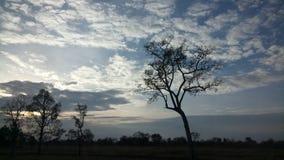 Solnedgång i ensam dag Arkivbilder
