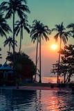 Solnedgång på en liten tropisk strand som omges av palmträd Natur Royaltyfri Foto