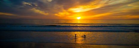 Solnedgång på havet med konturer av surfare Fotografering för Bildbyråer