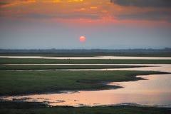 Solnedgång över den Gorongosa nationalparken Royaltyfri Fotografi