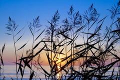 Solnedgången tänder Arkivfoton