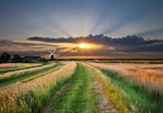 solnedgångwindmill Arkivbilder