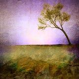 Solo árbol del vintage Foto de archivo