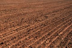 Solo arado de um campo agrícola Foto de Stock Royalty Free