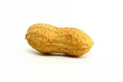 Solo cacahuete Imagen de archivo