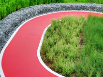 Solo camino rojo vacío del carril para Biking a través de las plantas y de los arbustos en el parque fotografía de archivo libre de regalías