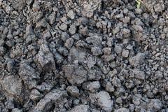 Solo cinzento, torrão do solo, solo seco, protuberância do solo Foto de Stock