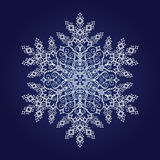 Solo copo de nieve detallado Fotos de archivo