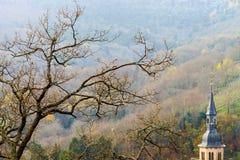 Solo día del otoño de la silueta del árbol Fotografía de archivo