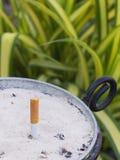 Solo extremo de cigarrillo con la ceniza en potes de la arena Foto de archivo