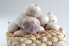 Solo Garlic Royalty Free Stock Images