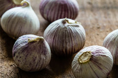 Solo garlic bulbs on rough wood background with copyspace. Horizontal Royalty Free Stock Photography