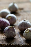 Solo garlic bulbs on rough wood background with copyspace. Vertical Stock Photography