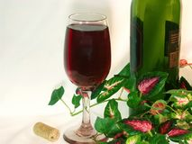 Solo glass of red wine and wine bottle amongst ivy leaves. Stock Photos