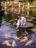 Solo kvinnlig handelsresande som matar Koi Fish på kliva stenar runt om Koi Fish på den huvudsakliga springbrunnen på Tirta Gangg royaltyfri fotografi