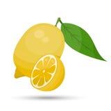 Solo limón del vector Stock de ilustración
