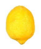 Solo limón maduro Fotografía de archivo libre de regalías