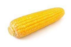 Solo maíz Fotos de archivo