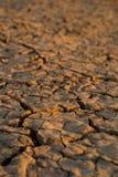 Solo ocidental seco Imagens de Stock