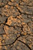 Solo ocidental seco Imagem de Stock