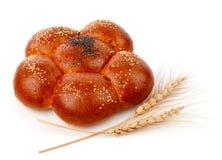 Solo pan fresco con maíz Imagenes de archivo
