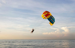 Solo Para sailing. A solo para sailing over the sea Royalty Free Stock Image