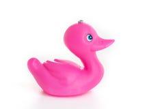 Solo pato de goma rosado Fotos de archivo libres de regalías