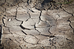 Solo secado que racha-se sob o sol scorching Fotos de Stock Royalty Free
