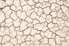 Solo seco após a precipitação da falta Fotos de Stock