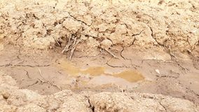 Solo seco com água foto de stock
