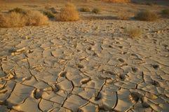 Solo seco - disastre da ecologia Imagem de Stock Royalty Free