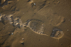 Solo Shoe Print in the Sand Royalty Free Stock Image