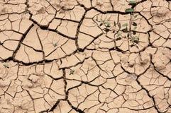 Solo - terra seca rachada sem texturas da água fotos de stock
