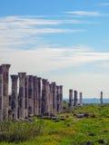 Soloi pompeipolis, konungväg Royaltyfria Foton