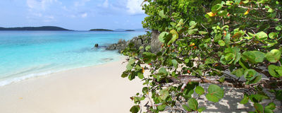 solomon святой john пляжа Стоковое Фото