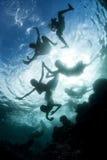 Solomon Islanders Swimming Playfully images stock