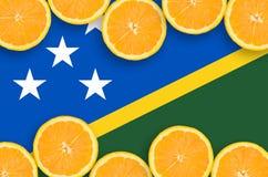 Solomon Islands flagga i citrusfruktskivahorisontalram fotografering för bildbyråer