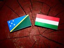Solomon Islands flagga med den ungerska flaggan på en isolat för trädstubbe Arkivbild