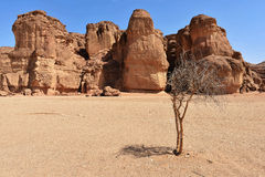 Solomons Pillars, Israel. Solomons Pillars, Timna park, Israel. The pillars were formed over 500 million years ago by rain penetrated into fissures in the Royalty Free Stock Photo